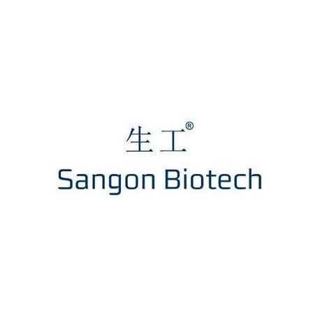 Anti-GTF2I rabbit polyclonal antibody